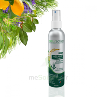 Assaini'spray Huiles essentielles BIO Fl/200ml à Pessac