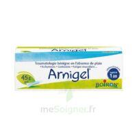 Boiron Arnigel Gel T(alumino-plastique)/45g à Pessac