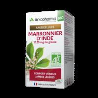 Arkogélules Marronnier D'inde Bio Gélules Fl/45 à Pessac