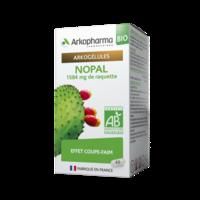 Arkogelules Nopal Bio GÉl Fl/45 à Pessac