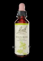 Fleurs de Bach® Original Wild Rose - 20 ml à Pessac