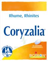 Boiron Coryzalia Comprimés orodispersibles à Pessac