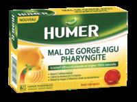 Humer Pharyngite Past Mal De Gorge Baies Sauvages à Pessac