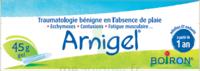 Boiron Arnigel Gel T/45g à Pessac